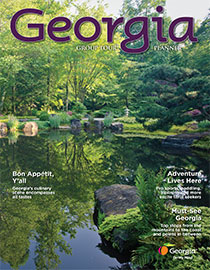 Georgia Group Tour Planner 2014